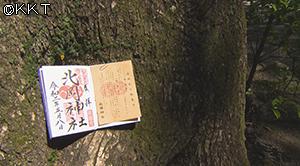 200518_gotiyaku07.jpg